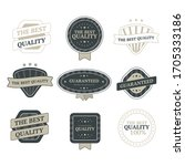 set of vintage badges and... | Shutterstock .eps vector #1705333186
