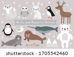arctic and antarctic animals ... | Shutterstock .eps vector #1705542460