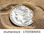 American Silver Dollar Close Up