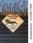 Iguana Warning Sign On The...