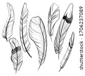 set of feathers. hand drawn... | Shutterstock . vector #1706237089
