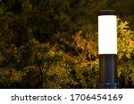 Lantern In Night Garden On The...