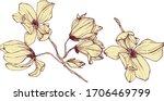 hand drawing wild flower vector   Shutterstock .eps vector #1706469799