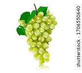 vector green grapes... | Shutterstock .eps vector #1706550640
