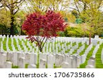 Rows Of Tombs And Graves On...