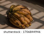 Branches of ripe banana with...