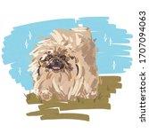Pet Illustration. Pekingese...