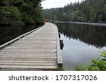 Wooden Boardwalks In Color And...
