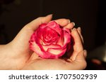The Beautiful Rose In Hands ...
