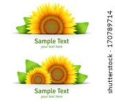 summer banner  floral... | Shutterstock .eps vector #170789714
