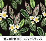 beautiful tropical vintage... | Shutterstock .eps vector #1707978706