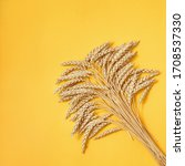 Small photo of Sheaf ripe golden wheat ears close up. Background of ripening ears. Concept of autumnal harvest time. Flat lay with copy space.