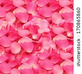 Stock photo pink rose petals texture and background 170865860