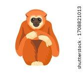gibbon primate mammal. monkey... | Shutterstock .eps vector #1708821013