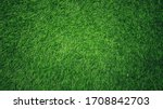 Green Grass Background In The...
