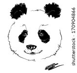 hand drawing panda head  white... | Shutterstock .eps vector #170904866
