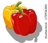 sweet pepper isolated on white... | Shutterstock .eps vector #170936384