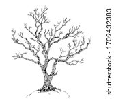 hand drawn tree isolated on... | Shutterstock .eps vector #1709432383