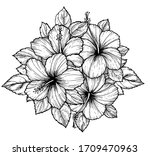 hand drawn tropical hibiscus... | Shutterstock .eps vector #1709470963