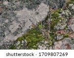 Texture Of Natural Rock...