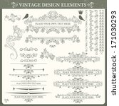 vintage ornament set. vector... | Shutterstock .eps vector #171030293