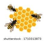 Three Bees On Honeycombs....