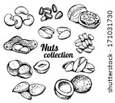 agriculture,almond,assortment,broken,cartoon,cashew,cedar,collection,decoration,delicious,design,dessert,diet,drawing,drawn