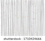 hand drawn vertical parallel... | Shutterstock .eps vector #1710424666