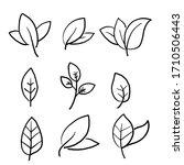 hand drawn eco set of black... | Shutterstock .eps vector #1710506443