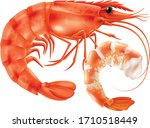art of seafoods in white... | Shutterstock .eps vector #1710518449