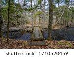 A Small Wooden Bridge Over A...