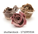 Small photo of rose kindling - flower shape made of egg containers dipped in stearin, used as kindling