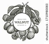 Hand Drawn Sketch Walnut Design ...