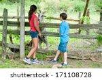 children feeding a goat   Shutterstock . vector #171108728