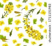 rape flowers  canola oil....   Shutterstock .eps vector #1711151983