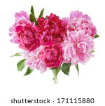 Stock photo peony bunch isolated on white background 171115880