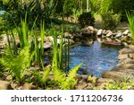 Small Garden Pond With Stone...