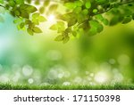 eco nature   green and blue... | Shutterstock . vector #171150398