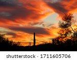 Evening Sky In Organ Pipe...