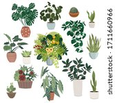 Indoor Plants. Collection Of...