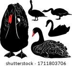 Swans Bird Silhouettes...