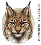 Lynx. Realistic, hand-drawn, color portrait of a lynx head on a white background in watercolor style.
