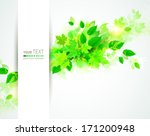 banner with fresh green leaves  | Shutterstock .eps vector #171200948