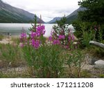 Bennet Lake  End Of Chilkoot...