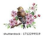 Watercolor Floral Branch...