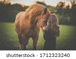 Cute little girl with her horse ...