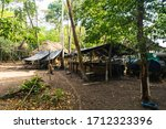Basecamp For Archeologists And...