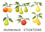 ripe apples and pears fruits... | Shutterstock .eps vector #1712672260