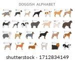 doggish alphabet for dog lovers....   Shutterstock .eps vector #1712834149