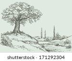 Vector Landscape. Mighty Oak...
